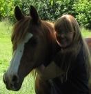 The Opal Horse